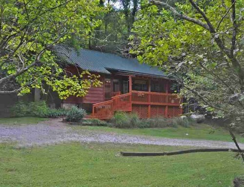 Black Bear Cave Cabin – 1 bedroom 1 bathroom/sleeps 4