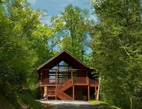 Black Bear Falls Cabin – 5 bedroom 3.5 bathroom/sleeps 15